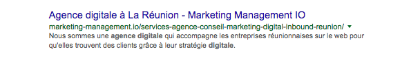 marketing digital a la reunion.png