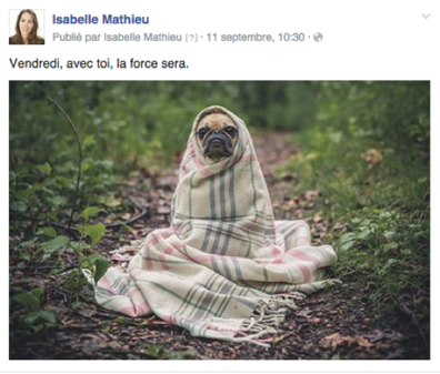 post facebook actualite.png