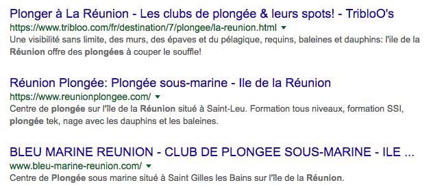 recherche google plongee reunion.png