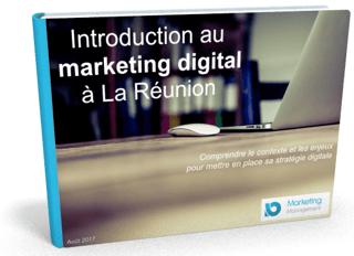 livre blanc inbound marketing contenu.png