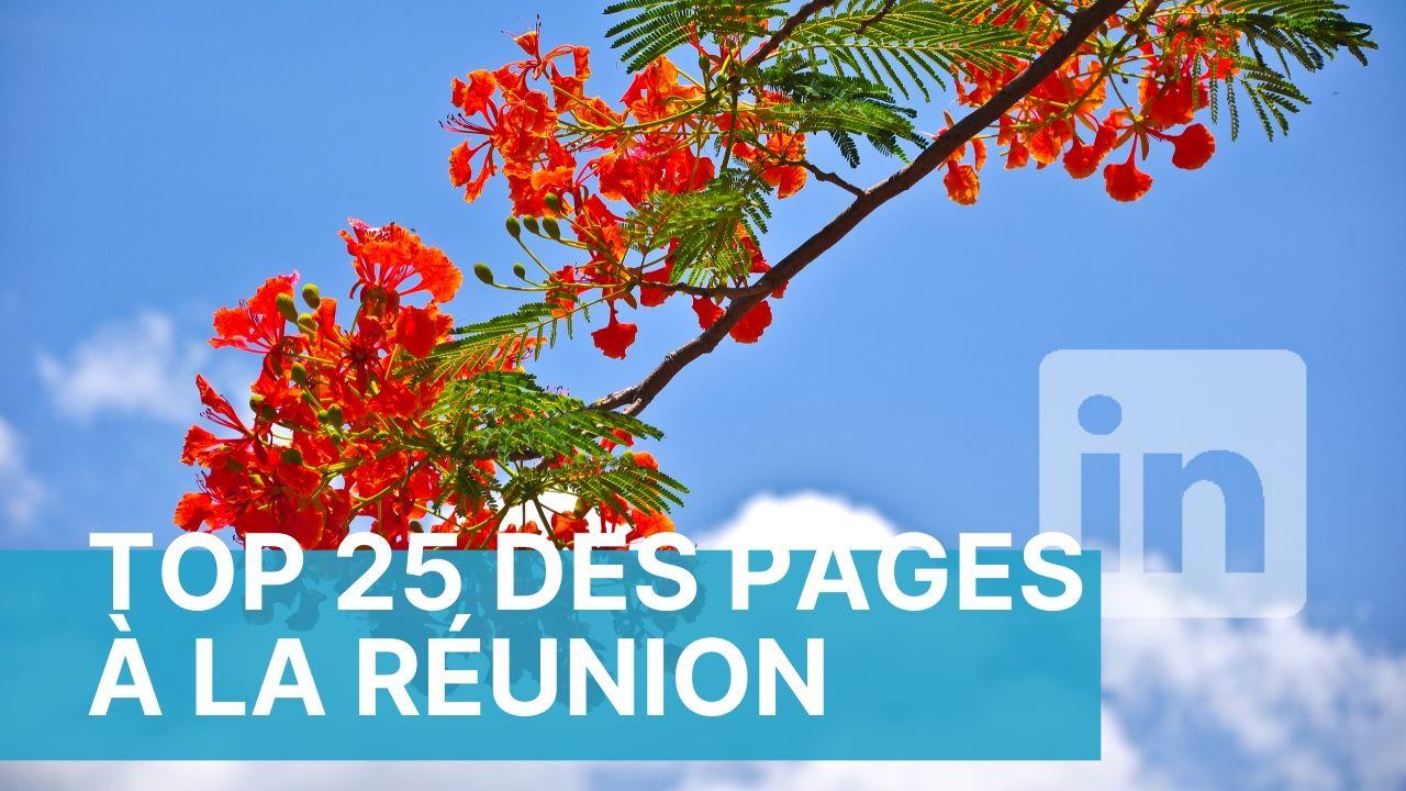 Le Top 25 des pages Linkedin à La Réunion